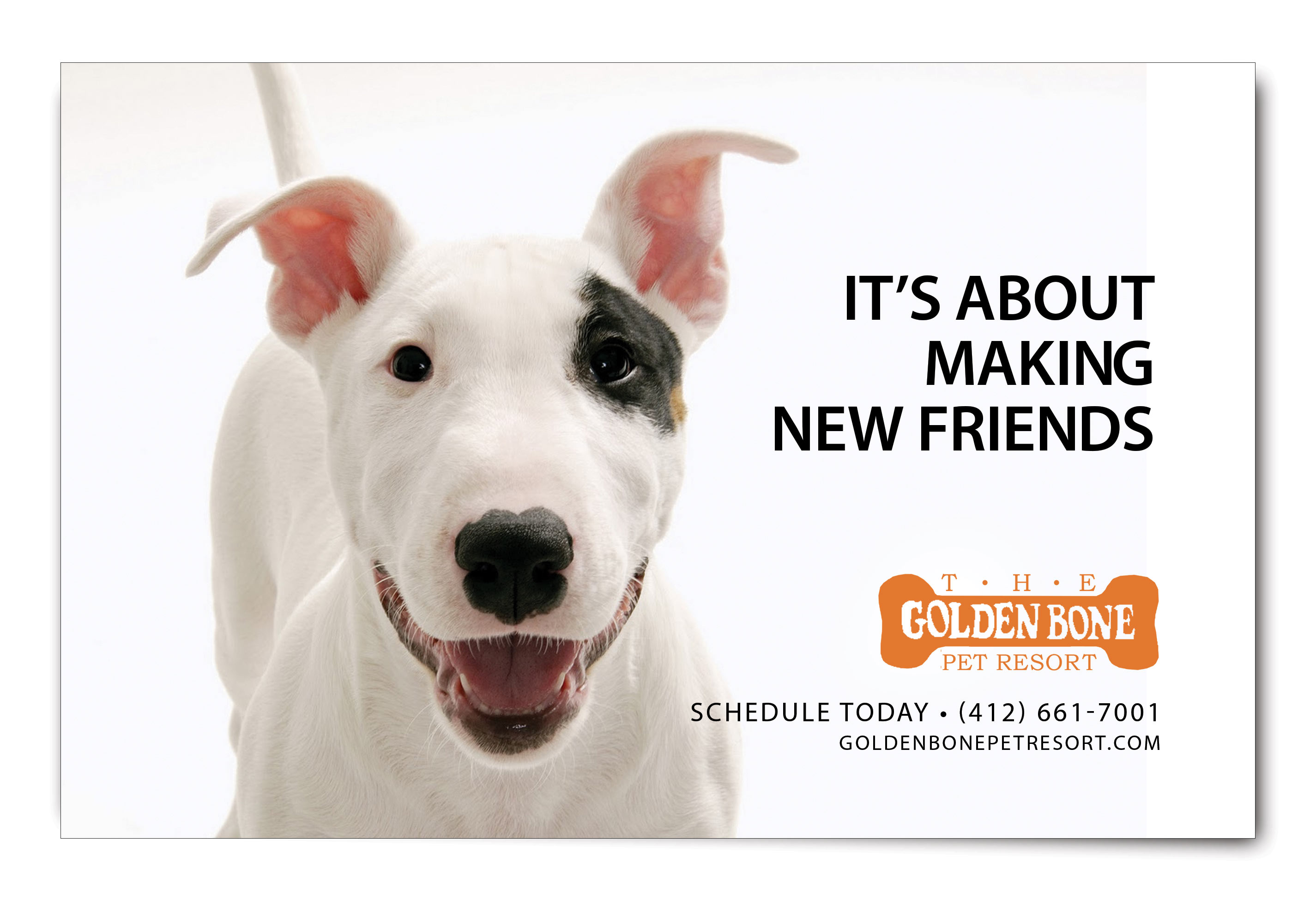 The Golden Bone Pet Resort Ad