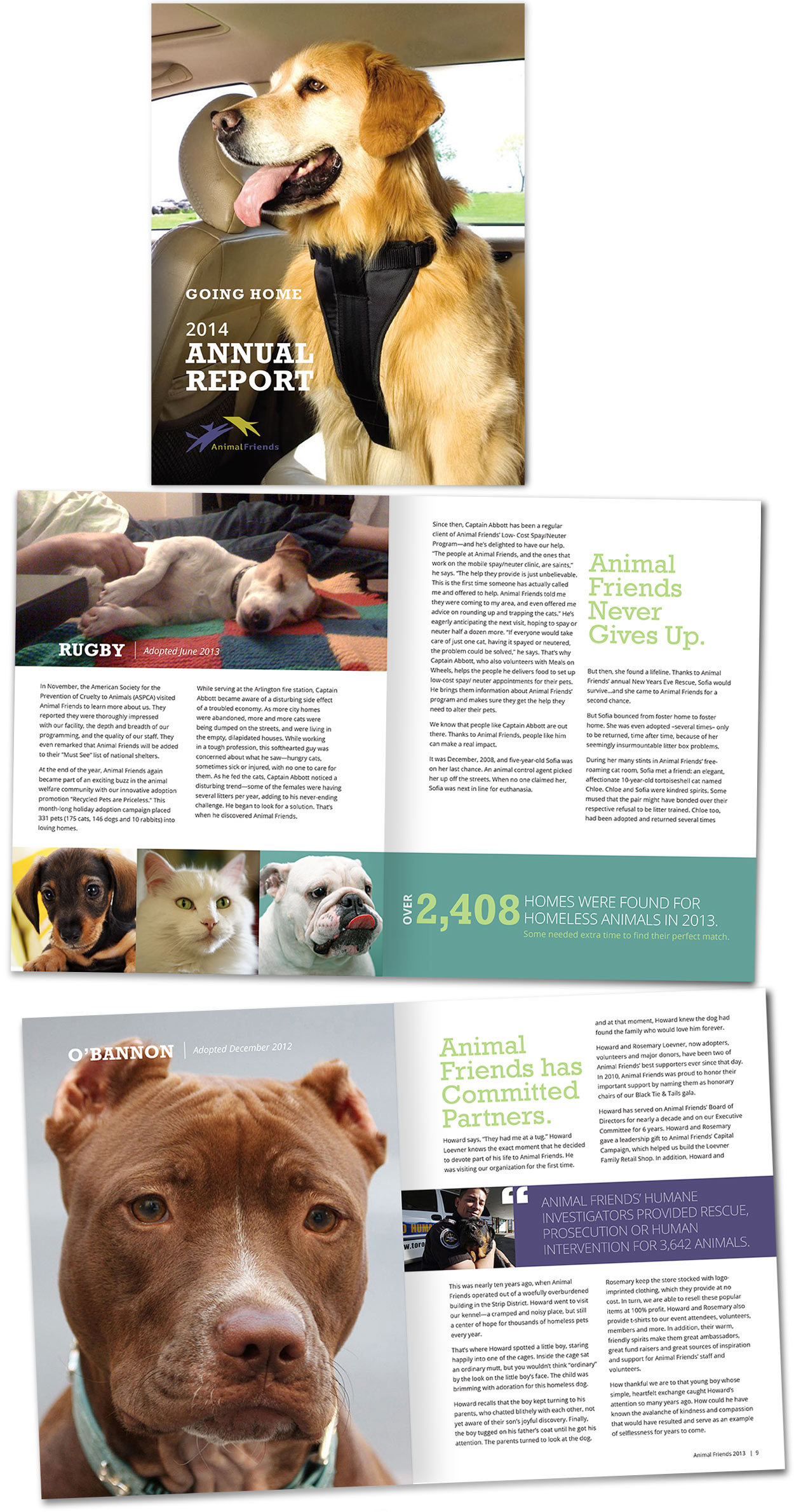 Animal Friends Annual Report
